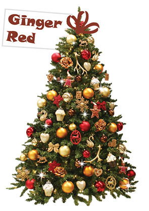 Ginger Red kerstboom